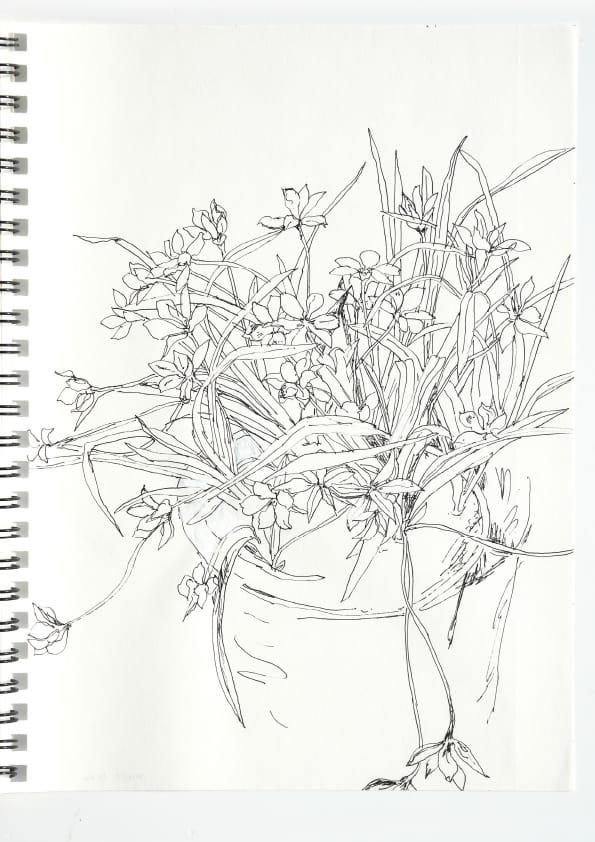 Milchstern (April 2020), Tuschezeichnung 30 x 40 cm 61