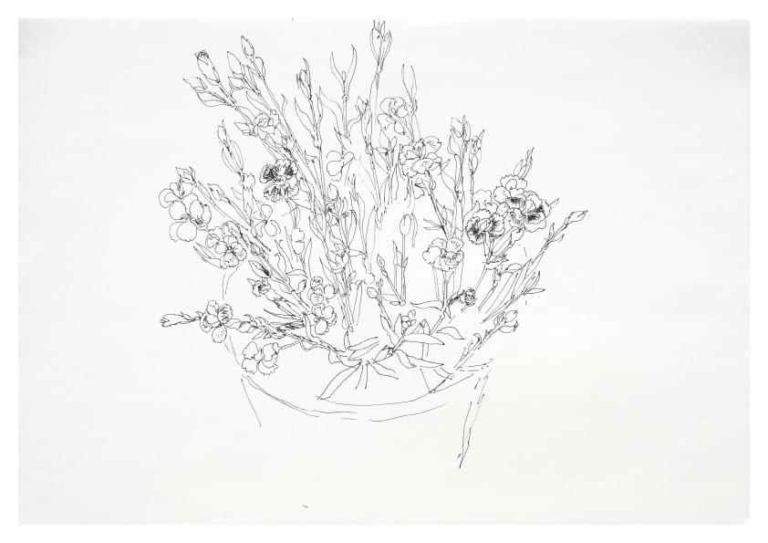 Kleine Nelken (Mai 2020), Tuschezeichnung 30 x 40 cm 62