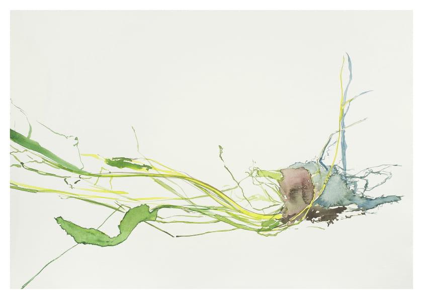 Grasbüschel mit Wurzelballen, Detail (2014), Aquarell 50 x 65 cm 6