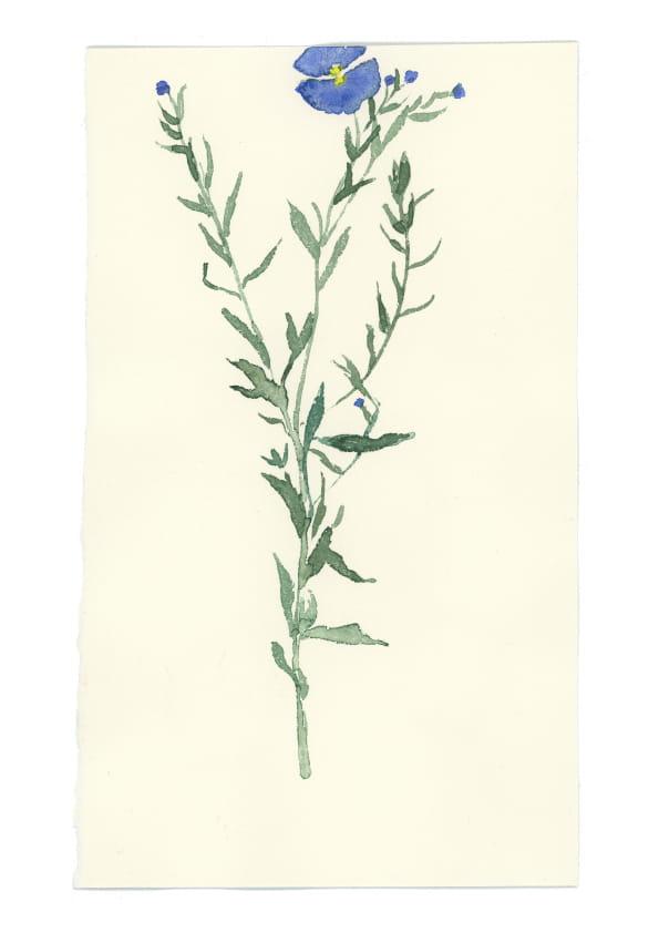 Lein (Mai 2020), Aquarell 24 x 15 cm 85