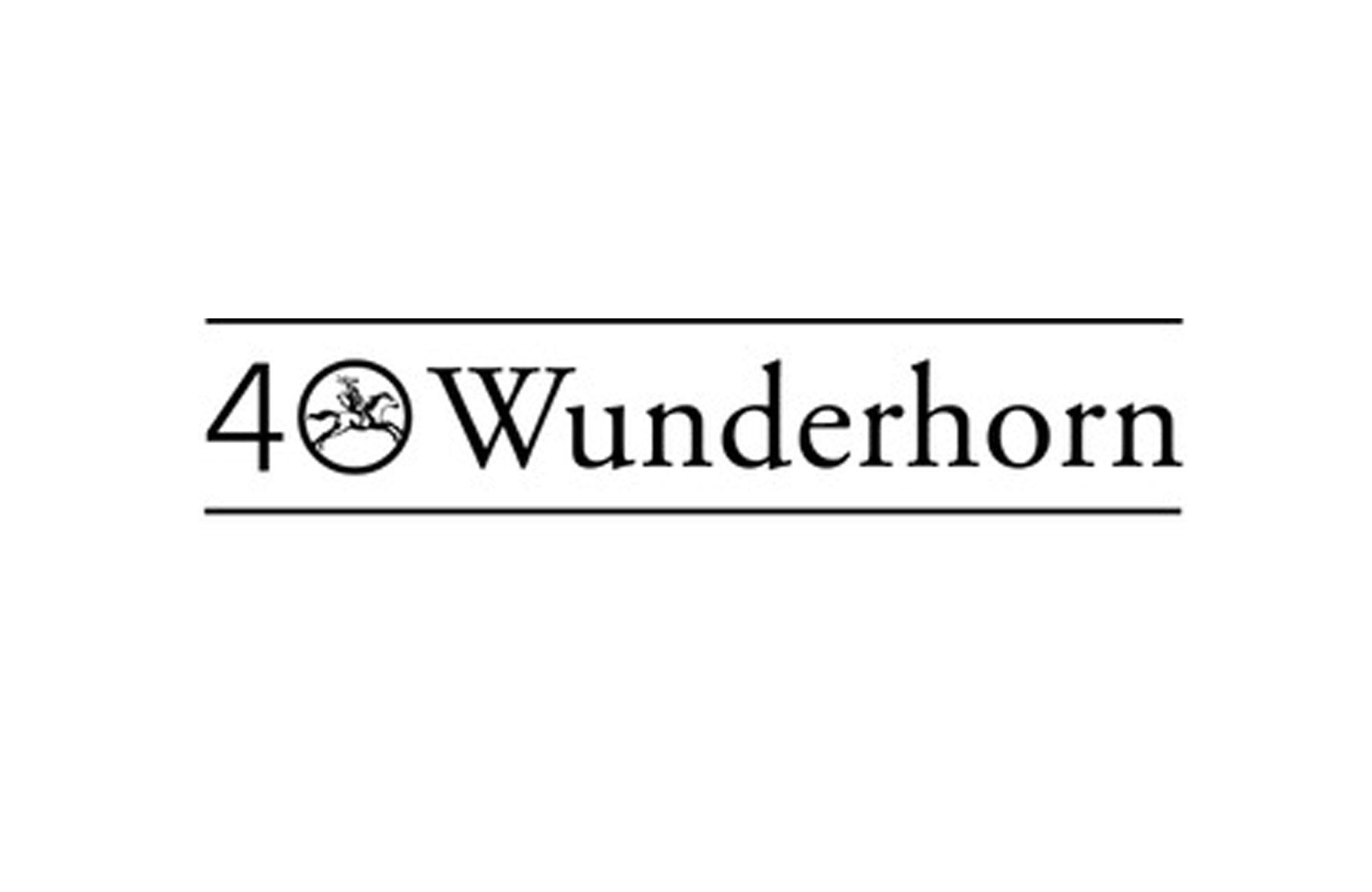 Logo Verlag Das Wunderhorn (Heidelberg)