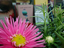 Wetterleuchten - Sommermarkt der unabhängigen Verlage,                                                             Samstag, 23.07.16               /                   11.00              Uhr                               <br/>(c) Wenzel, Bogendörfer